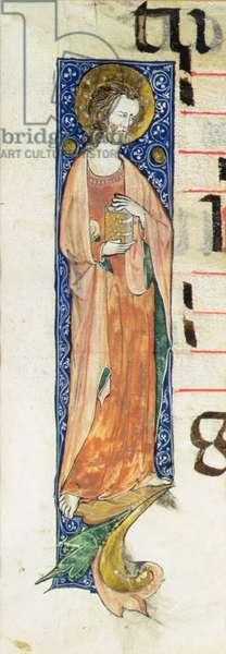 An Apostle Holding a Book, c.1320 (vellum)
