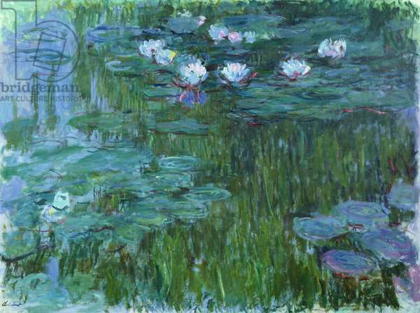 Waterlilies, 1914-17 (see detail 158601) (oil on canvas)