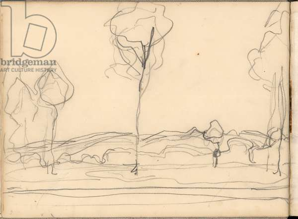 The Three Trees (pencil on paper)