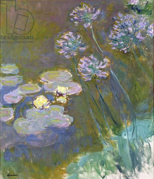 Waterlilies and Agapanthus, 1914-17 (see detail 414400) (oil on canvas)