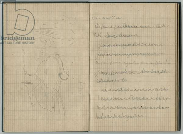 Swan and deleted handwritten page, from a sketchbook, 1886 (pencil on paper)