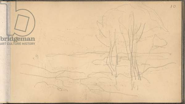 Landscape with Two Trees (pencil on paper)
