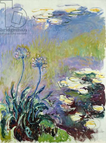 The Agapanthus, 1914-17 (oil on canvas)