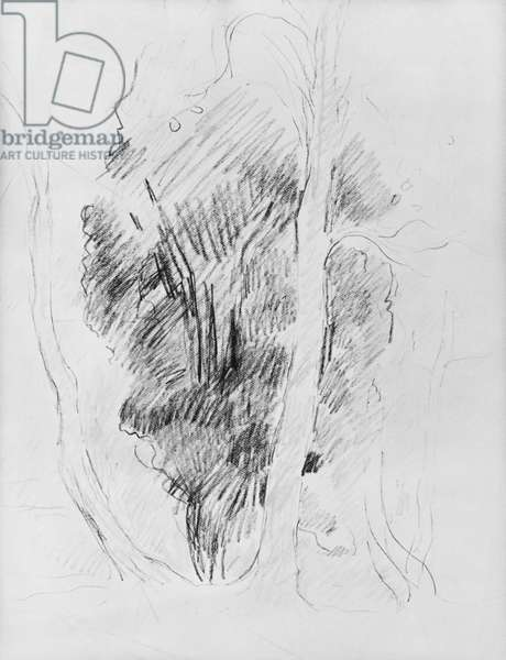 Study of trees, 1893 (pencil on paper)