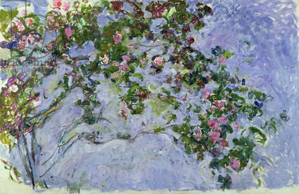 The Roses, 1925-26 (oil on canvas)