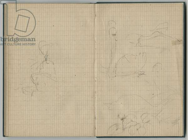 Swans, from a sketchbook, 1886 (pencil on paper)