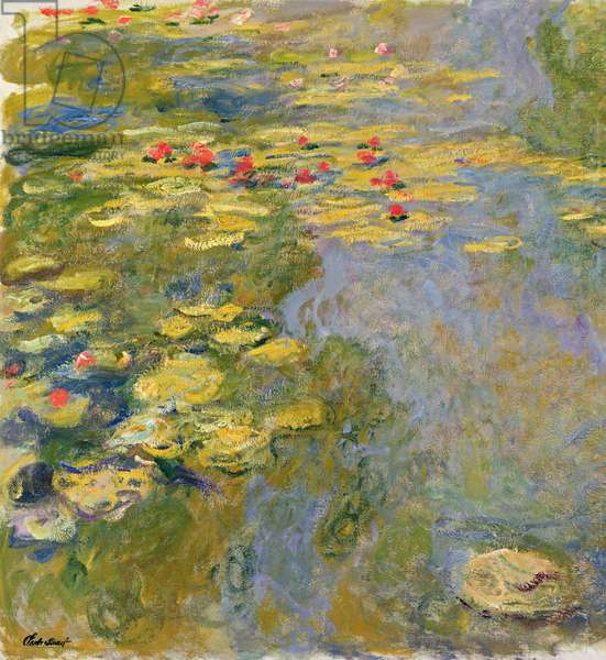 The Waterlily Pond, 1917-19 (oil on canvas) (see detail 382338)