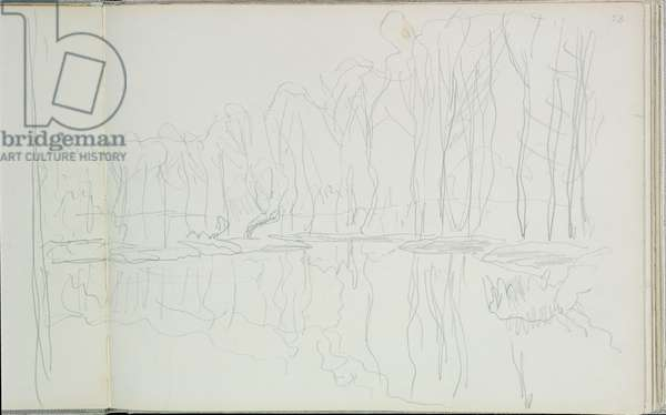 Poplar trees on the river Epte (pencil on paper) (b/w photo)