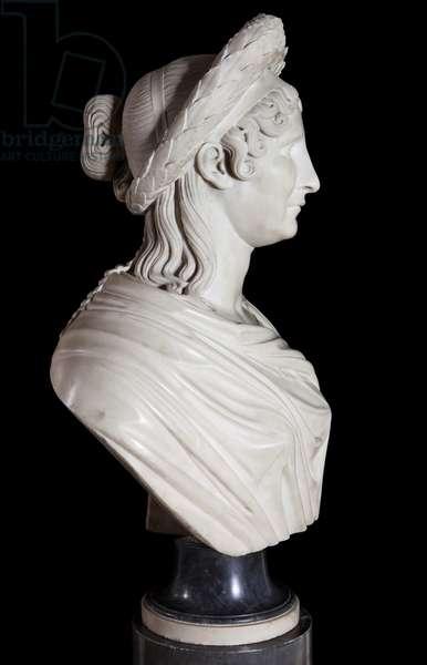 Bust of Madame Mere, Marie-Laetitia Ramolino (marble)