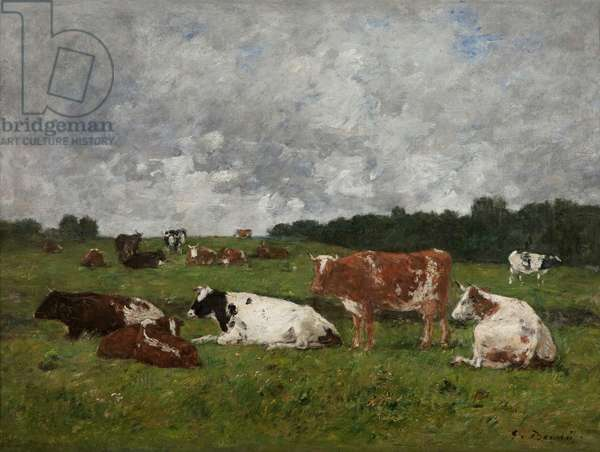 Cows at the pasture (oil on canvas)
