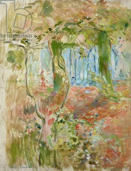 Undergrowth in Autumn, 1894 (oil on canvas)