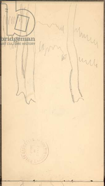 Trees trunks, 1895 (pencil on paper)
