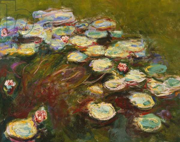 Waterlilies, 1914-17 (detail of 82359) (oil on canvas)