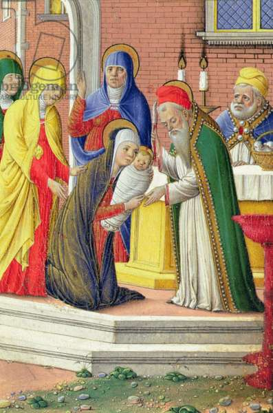 Presentation in the Temple, c.1465 (vellum)