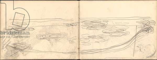 Nympheas pond (pencil on paper)