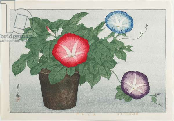 Morning Glories, August 1929 (colour woodblock print)