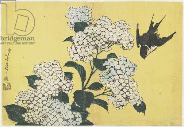 Hydrangea and Swallow, c. 1832