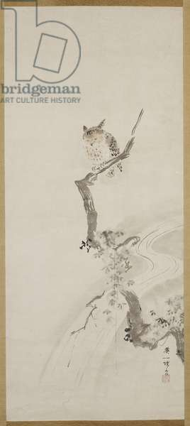 One Owl Perched in a Tree, c. 1710