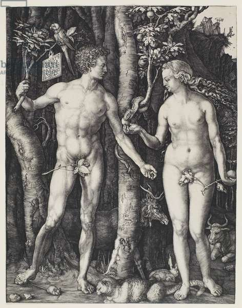 Adam and Eve, 1504 (engraving)