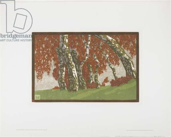 Birken im Herbst, 1908 (colour woodcut)