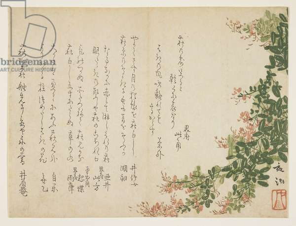 Flowering bush clover (colour woodblock print)