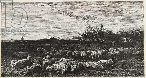 Le Grand Parc a Moutons, 1862