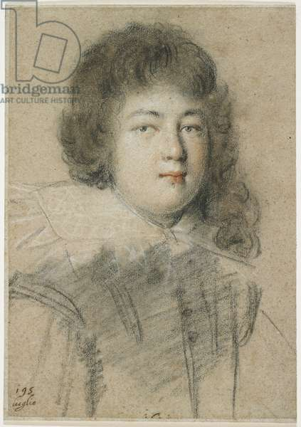 Portrait of an Adolescent Boy, 1621 (red, black, and white chalk on faded brown laid paper)