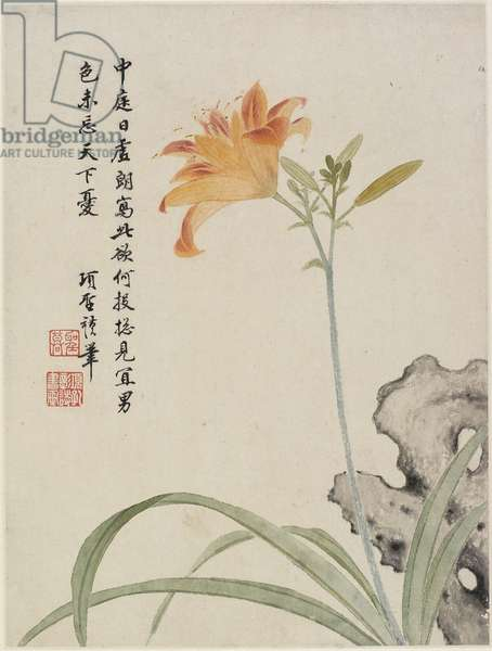 Day-Lily from a Flower Album of Ten Leaves, 1656 (ink & colour on paper)