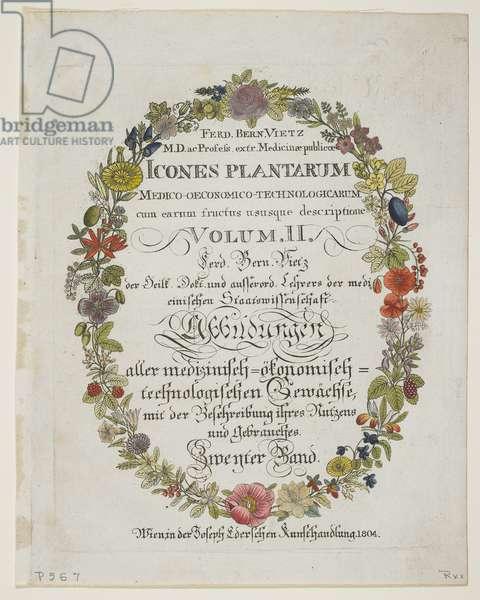 Frontispiece and Title Page, Vol. II, from Icones Plantarum Medico-Oeconomico-Technologicarum cum Earum Fructus ususque Descriptione, 1804 (hand-coloured engraving)