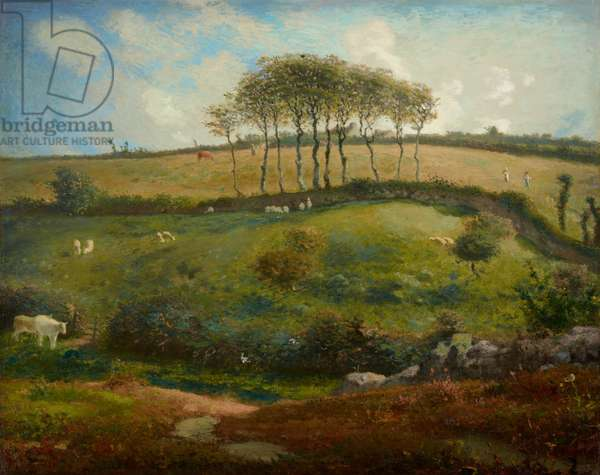 Pasture near Cherbourg (Normandy), 1871-2 (oil on canvas)