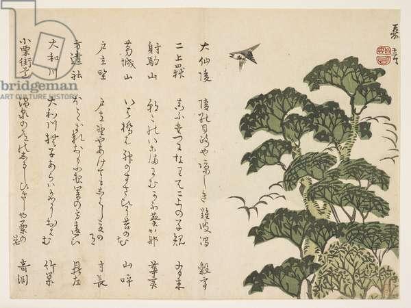 Big tree and birds, c.1830-44 (colour woodblock print)