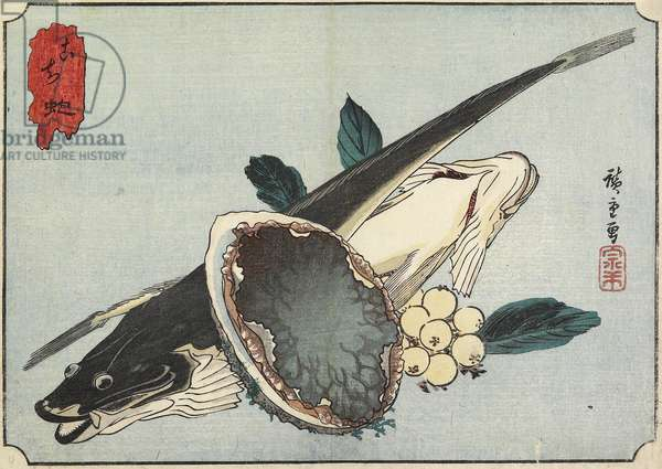 Flathead and Abalone, early 19th century