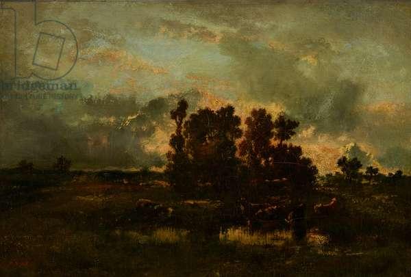 Wet Pasture, c.1870 (oil on canvas)