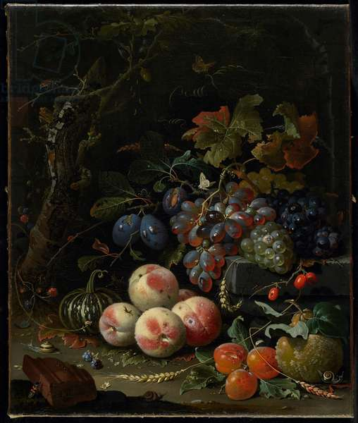 Still Life with Fruit, Foliage and Insects, c.1669 (oil on canvas)