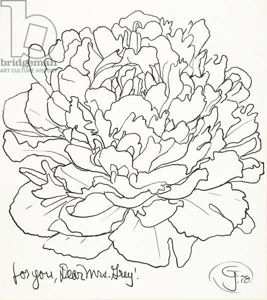 for you, Dear Mrs. Grey! (cabbage), 1978 (pen & ink)