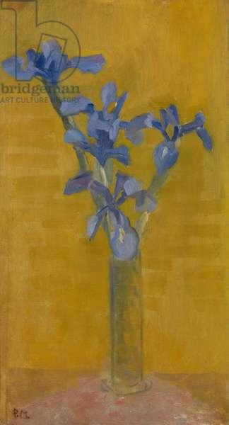 Irises, c.1910 (oil on canvas)