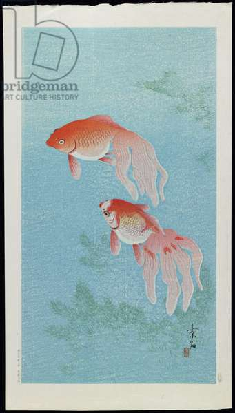 Goldfish, 1920s (colour woodblock print)