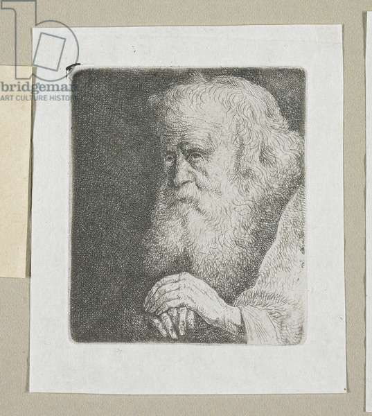 Half-Length of an Old Man with a White Beard, 1774-1789