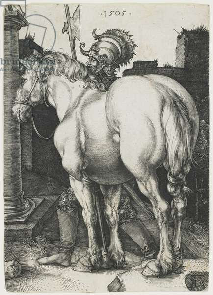 The Great Horse, 1505