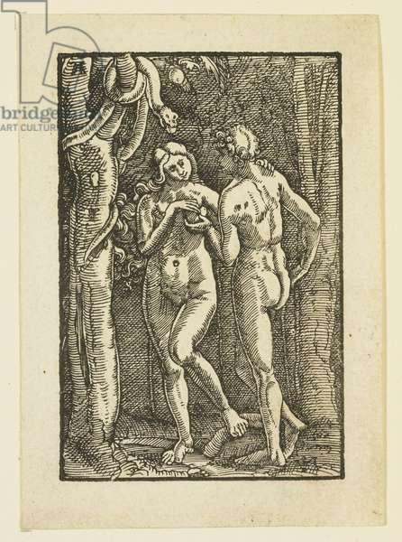 Adam and Eve Eating the Forbidden Fruit, c.1513 (woodcut)