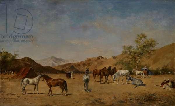 An Arabian Camp, 1873 (oil on panel)