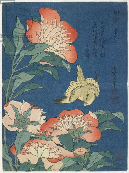 """Peonies and Canary"""", c. 1833"""