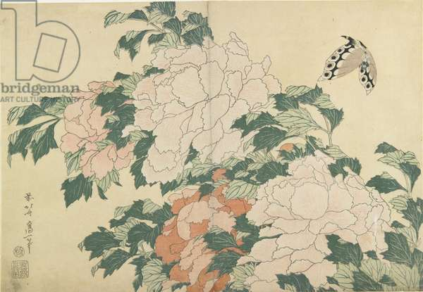 Peonies and Butterfly, c. 1830-1831