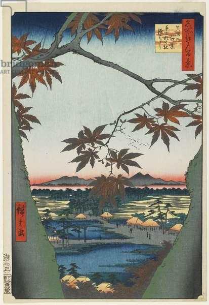 """Maple Trees at Mama with View of Tekona Shrine and Bridge"", January 1857"
