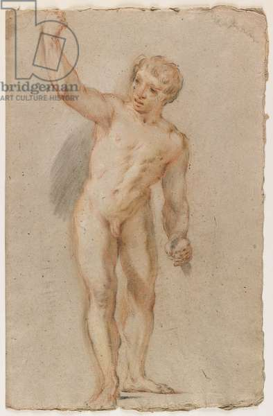 Standing Male Nude (black, red & brown chalk)