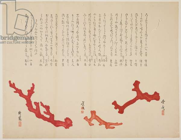 (Three branches of coral), c. 1818-1829