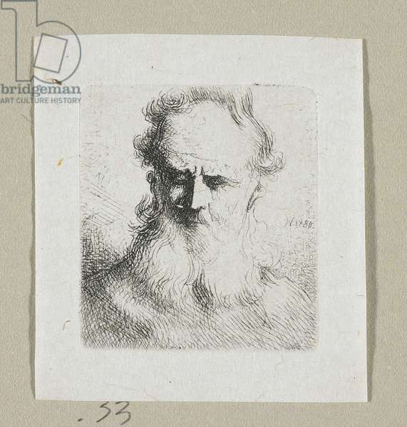 Head of Old Man Facing Forward, 1780