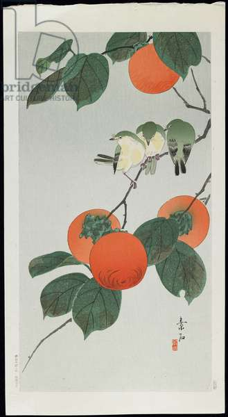 Persimmon and Birds, late 1920s - early 1930s (colour woodblock print)