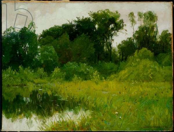 After Rain, on Minnehaha Creek, 1897 (oil on canvas)