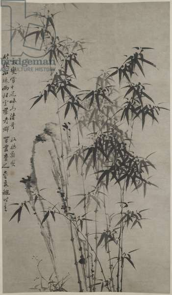 Bamboo and Rocks, c.1760 (ink on paper)